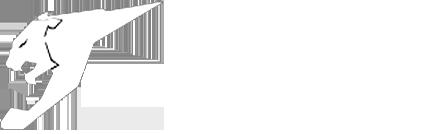 آرمان ویژن Retina Logo