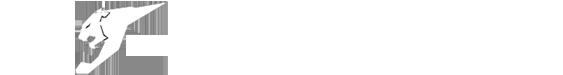 آرمان ویژن Logo